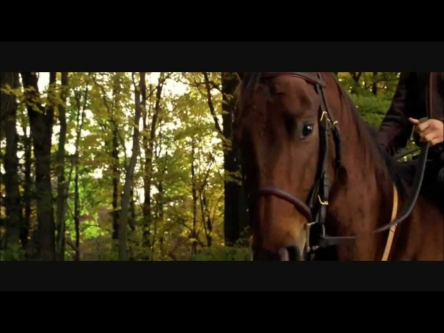 Seabiscuit -- You can't take me (Bryan Adams)