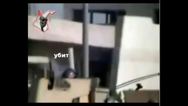 СИБНЕТ.ВИДЕО - Снайпер Джуба валит американских солдат. - видео ролик смотреть на Sibnet
