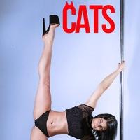 Логотип Pole Dance студия CATS, танцы Псков