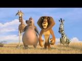 Мадагаскар 2  Madagascar Escape 2 Africa 2008