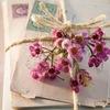 Ваша открытка - почтовые открытки на Ваш вкус