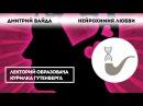 Дмитрий Вайда Нейрохимия любви