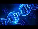 2. Химия клетки - Нуклеиновые кислоты, ДНК 9 класс - биология, подготовка к ЕГЭ и ОГЭ