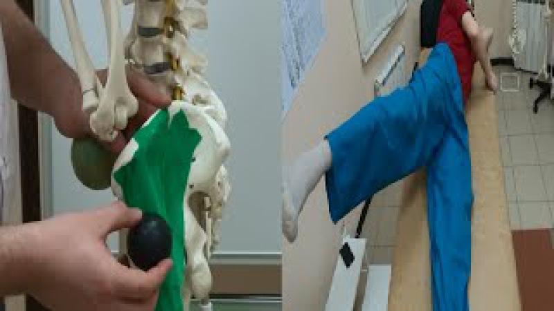Артроз тазобедренного сустава. Перекос таза. Боль в суставе. Средняя ягодичная мышца. Упражнения