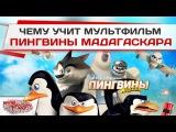 Чему учит мультфильм «Пингвины Мадагаскара»