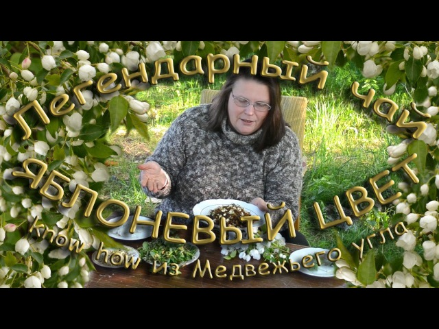 Легендарный чай ЯБЛОНЕВЫЙ ЦВЕТ know how из Медвежьего угла