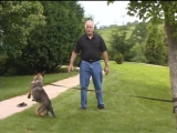Leerburg Basic Dog Training P5 - Commands
