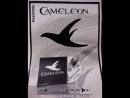 Caméléon - Nedmet 3la rayha (An algerian song)