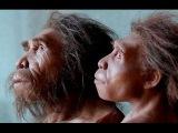 Секретные материалы: Прощай, обезьяна сенсационная теория происхождения человека (2014)
