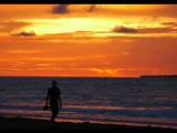 Francis Goya - La Playa