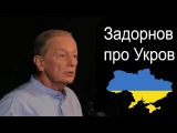 Михаил Задорнов про Укров и Рарога