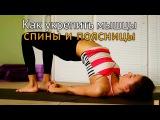 Как укрепить мышцы спины и поясницы