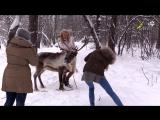 Мирослава Карпович из сериала Папины дочки, фотосессия с северным оленем