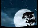 Scorpions Lonely Nights