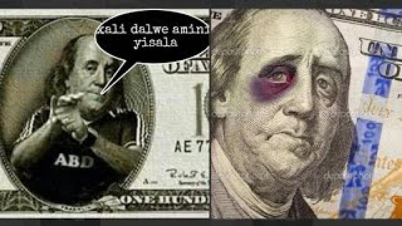 Telegramda Kun videosi Dollar haqida | Uz prikol