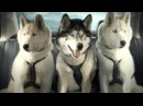 Suzuki Super Bowl Commercial With 50 Cent Suzuki Kizashi Mush See New Sled