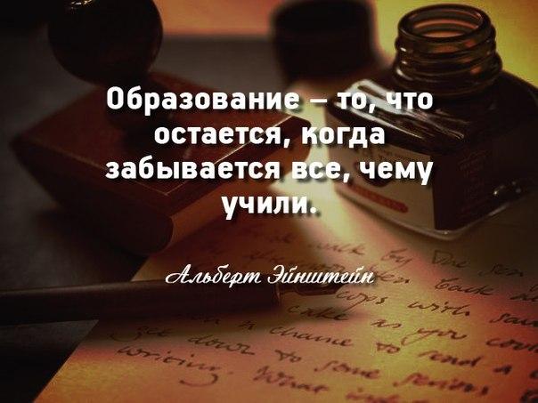 Плюс(Архангельск),Курсовые