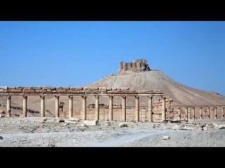 Сирия: исламистам пока не до Пальмиры