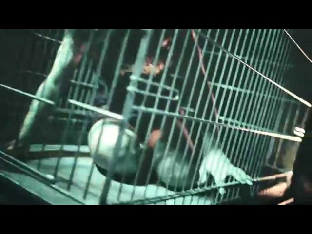 EVIL INVADERS Pulses Of Pleasure Official Video Napalm Records