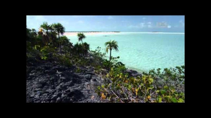 Голубые Багамы - Песчаные равнины