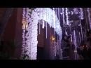Rain Forest by Misa Vu - Cuway Kieu Trinh Wedding