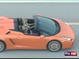 Ashley Benson &amp Vanessa Hudgens in a Lamborghini in Florida (20th March)