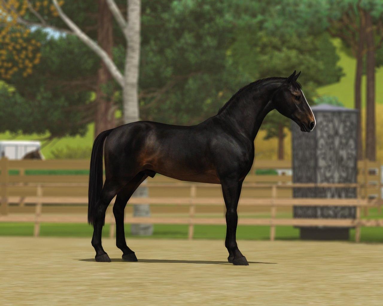 Регистрация лошадей в RHF 2 - Страница 38 A_xD3knCaFQ