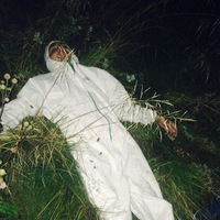Аватар Андрея Добродея