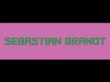 Sebastian Brandt - Deja Vu 002 on AH. FM (29-01-2009). Trance-Epocha