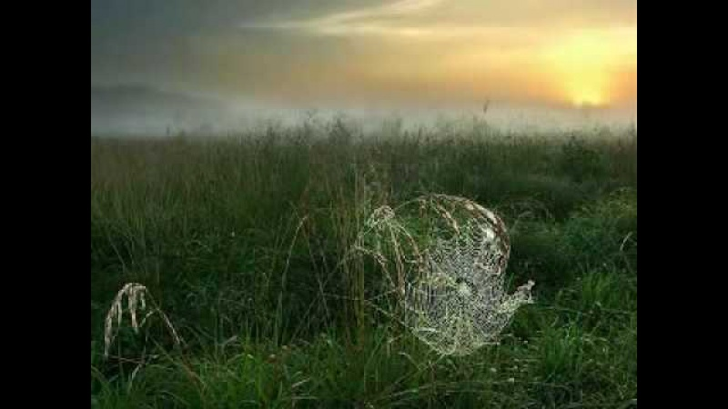 КОГДА ДУША БОЛИТ - Ожившая поэзия (АхтаЕва)