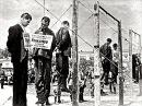 Публичная казнь фашистов на городской площади в Краснодаре 18 июля 1943 г Кинохроника