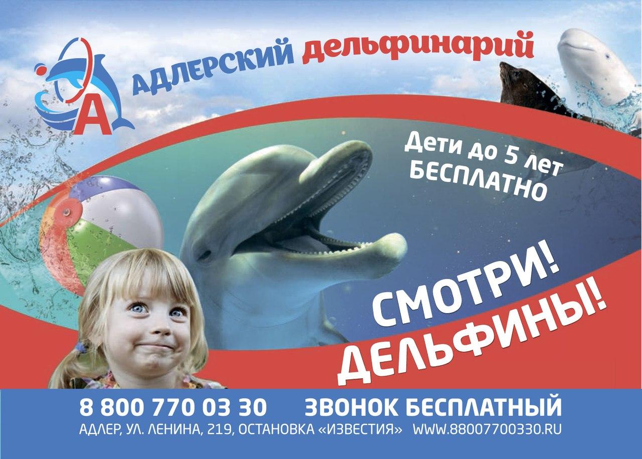 днльфины!