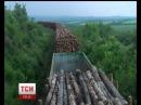 З Чернігівщини в окупований Донбас везуть ліс-кругляк