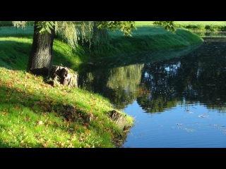 ~❀~ Франк Дюваль... Созвучие природы и музыки...