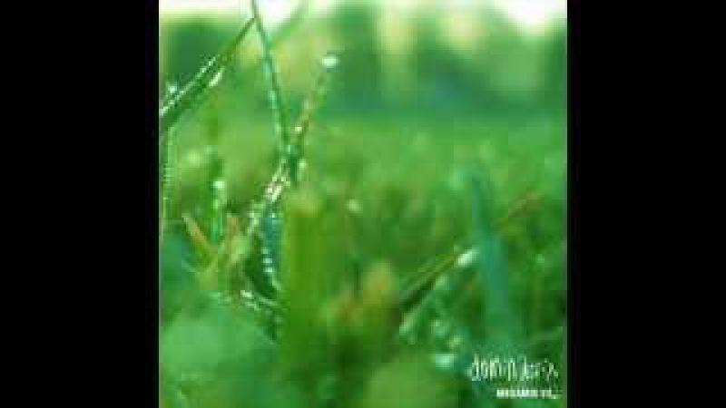 The Dominatrix Megamix (Depeche Mode Yazoo, Bronski Beat, New Order)