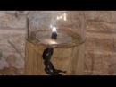 Как сделать свечу на жидком топливе Время горения 24 часа