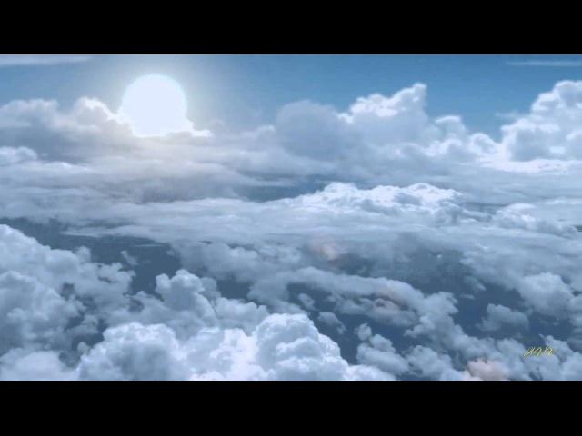 Павел Кашин - Тонкий лёд