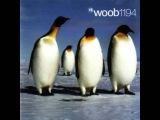 Woob - Woob 1194 (Full Album)
