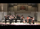 Pavel Karmanov - Twice a Double concerto 3-04-11 fine sound