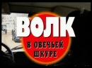 Криминальная Россия Современная Хроника - Волк в Овечьей Шкуре
