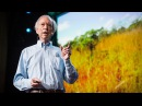 How to green the world's deserts and reverse climate change   Allan Savory