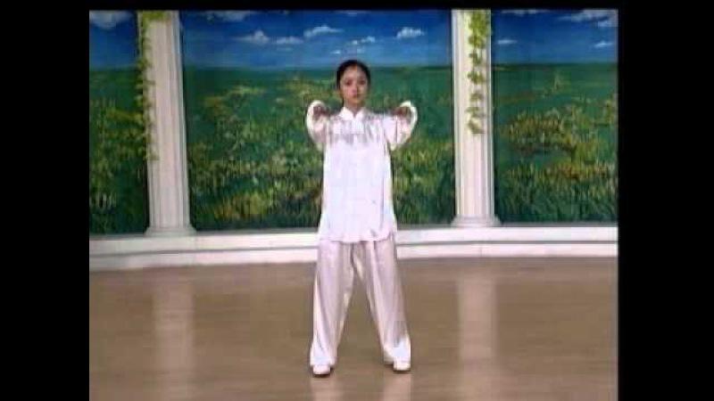 Тайцзицюань 10 форм, часть 1. 李德印八式太極拳教學(上)