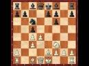 1 2 Шахматы Нимцович Моя система