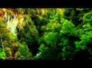 Vocal Trance Music - January 2012 (Music Video HD)