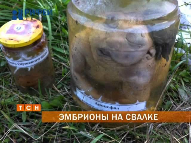 В Соликамске на свалке нашли банки с человеческими эмбрионами
