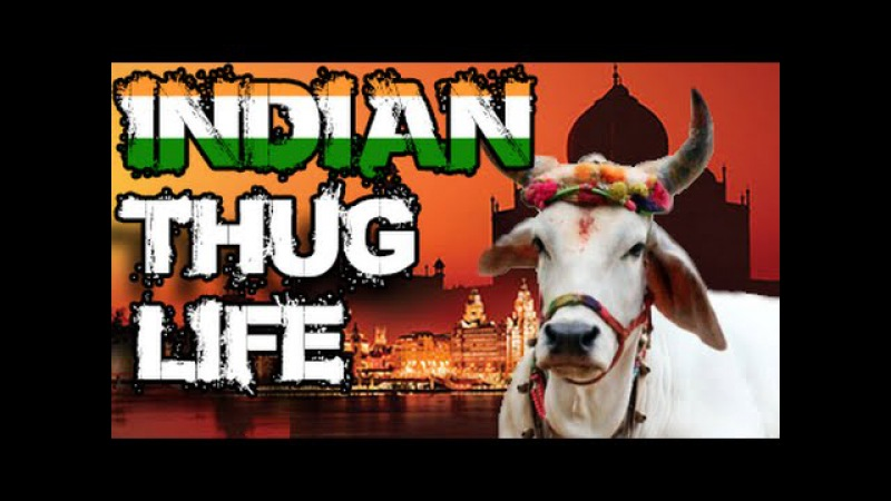 Ultimate Thug Life Compilation 38 India Special
