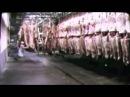 Величайшая речь всех времен (Чарли Чаплин,1940)