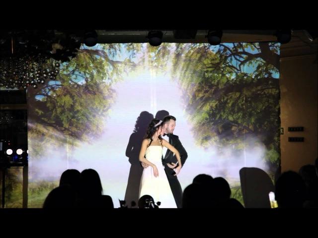 Свадебное проекционное шоу - Студия КОБРА