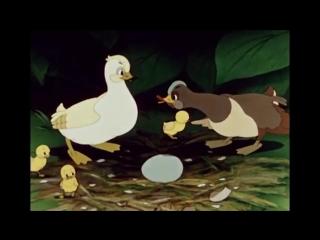 Гадкий утёнок _ Советские мультфильмы для детей