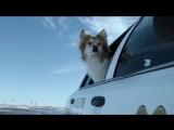 Фарго 1 сезон 2 серия (Fargo S01E02 LostFilm)